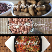 Screen Shot 2018-04-30 at 2.49.53 PM